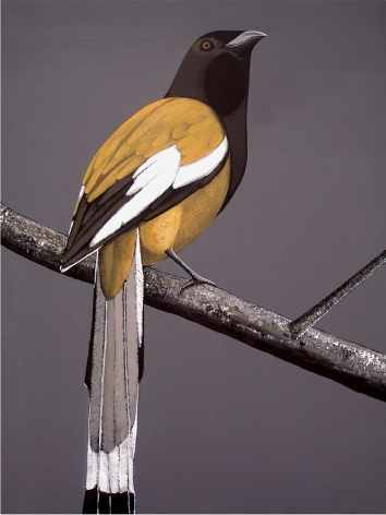 Rajan Krishnan  Pastoral Bird 2  2011 Acrylic on canvas 48 x 36 in.
