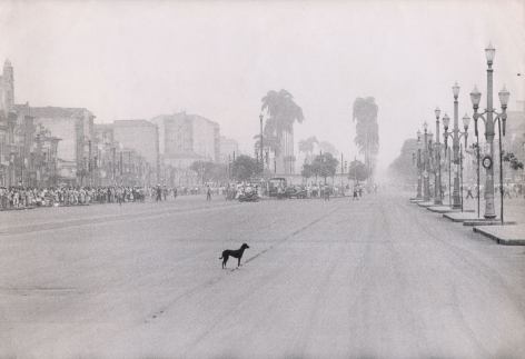 Leonard McCombe, Lonely Dog, Rio de Janeiro, ​1955. Small black dog in the center of an empty street. A large crowd gathers in the distance in the center left of the frame.