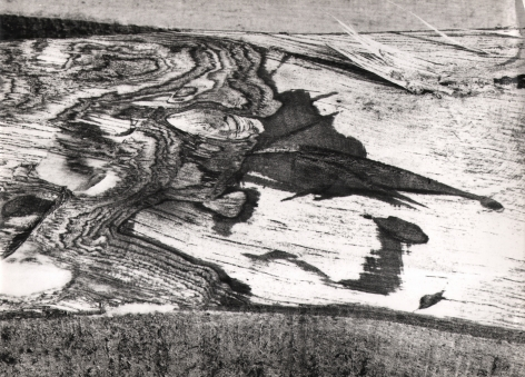 Mario Giacomelli, Motif Suggested by the Cut of the Tree, n.d. Detail of tree bark featuring raised sprinters. The left half of the frame features whirling shapes.