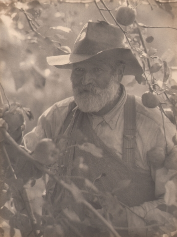 Doris Ulmann, New England (Apple picker), ​1928–1934. Older bearded man in a hat and overalls stands amongst the branches of an apple tree.