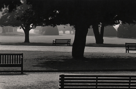11. Michael O'Cleary, Untitled, c. 1955–1961. Park scene with scattered trees and benches in silhouette.