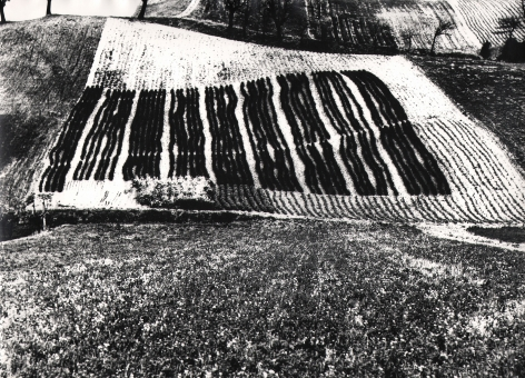 Mario Giacomelli, On Being Aware of Nature, 1954–2000. Abstract landscape composed of a white square divided by vertical black rectangles.