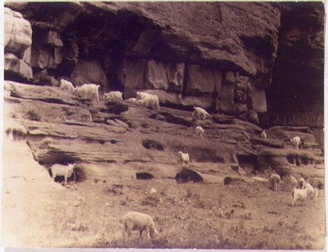 Canyon de Chelly, 1932, vintage gelatin silverprint, 4 5/8 x 6 3/8 in.
