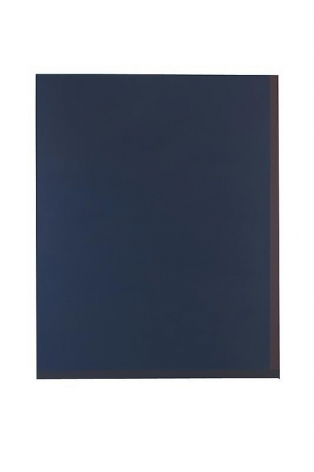 Byron Kim, Untitled (for H.W.S.), 2011. Acrylic on canvas, 228 x 183 cm. Courtesy of the artist and PKM Gallery.