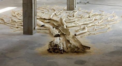 Shi Jinsong. White Tree No. 3, 2008.Chinese scholar tree wood, fishing wire, fish hooks, 12 x 13 m.Courtesy of the artist & PKM Gallery.