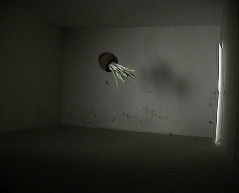 Jonas Dahlberg. Weightless Space (Ed. 6), 2004. Film installation, Dimensions variable.Courtesy of the artist & PKM Gallery.