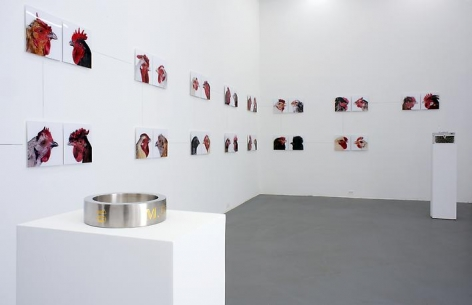 KOEN VANMECHELEN Leaving Paradise 2013. Installation view: CONNERSMITH.