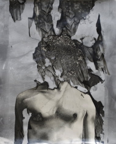 JASON EDWARD TUCKER Wither I  2013, silver gelatin print with mordançage process, 24 x 20 inches