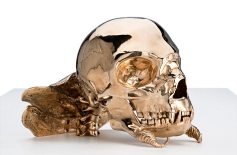 PATRICIA PICCININI Not Quite Animal II (Transgenic skull for the Bodyguard) 2008, bronze, 9.5 x 8.5 x 6 inches.