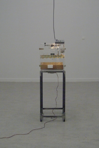 KOEN VANMECHELEN Incubator, Breeding Machine 2009, transparent incubator with audio, 61.5 x 17.5 x 17 inches