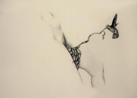 PATRICIA PICCININI Figure with Hummingbirds 2010, graphite on paper, 22.5 x 30 inches