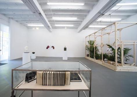 KOEN VANMECHELEN Leaving Paradise 2013. Installation view: CONNERSMITH.