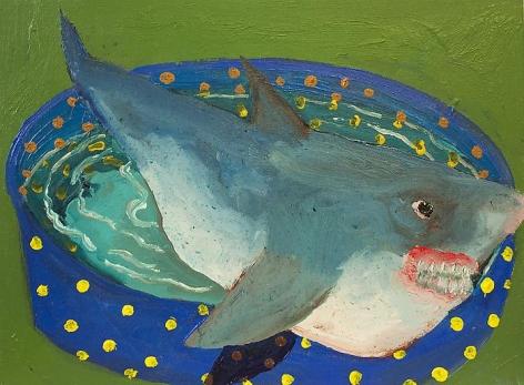 PHILIP HINGE Domestic Shark 2013, acrylic on canvas, 12 x 16 inches
