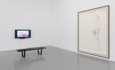 ZOË CHARLTON Paladins and Tourists 2011. Installation view: Conner Contemporary Art.