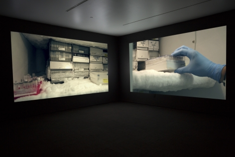 JANET BIGGS_The Persistence of Hope installation view