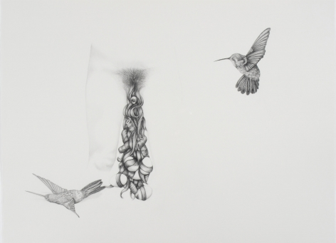 PATRICIA PICCININI Mother with Hummingbirds 2006, graphite on paper, 22.5 x 30 inches.