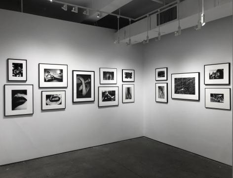 Daido Moriyama | Within the Shadows ; Bruce Silverstein Gallery