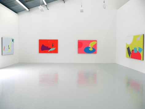 Installation View of Heather Gwen Martin: Recreational Systems