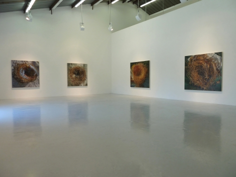 Exhibition View of Gail Roberts: Entanglement