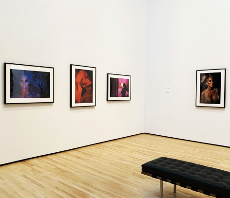 Exhibition View of Zackary Drucker: Icons