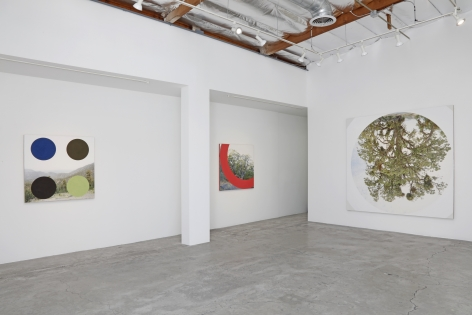 Installation View of James Hyde: GROUND