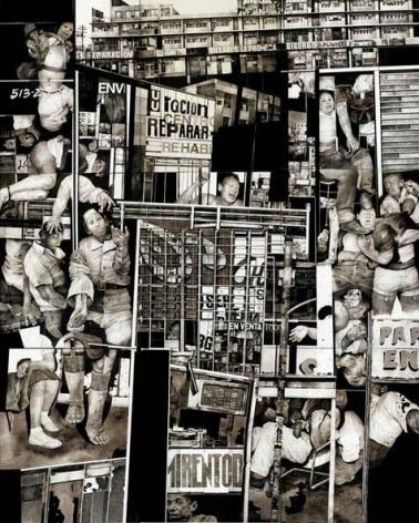 Hugo Crosthwaite Untitled (Atlanta), 2006