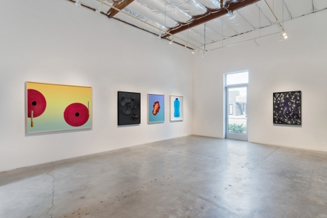 Installation View of Masood Kamandy: M.O.O.P.