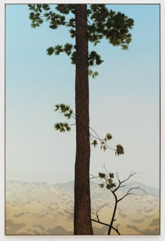 Jake Longstreth, In Glendale (Pine 4), 2020. Oil on muslin, 85 x 57.25 in, 216 x 145.5 cm (framed). (JLO20.006)