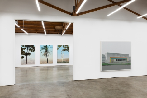 "Installation View of ""In Glendale (Canary Island Pine 2)"", ""In Glendale (Fan Palm)"", ""In Glendale (Eucalyptus)"", and ""Peach Tree Drive"""