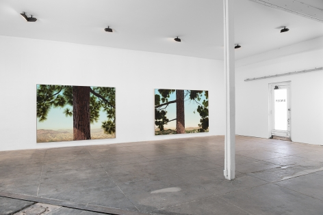 Installation View of Jake Longstreth: MARFA Invitational (April 22-25, 2021)