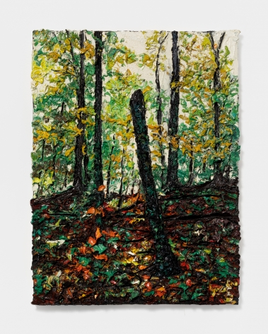 Robert Terry Hudson Valley Woods, 2012 Oil on board 24 x 18 in 61 x 45.7 cm (RTE21.006)