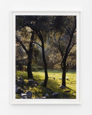 Margarete Jakschik Where you'll find me, 2021 Archival pigment print 32 x 24 inches (unframed) 81.3 x 61 cms (unframed)  33 3/4 x 25 3/4 inches (framed) 85.7 x 65.4 cms (framed) Ed. 1 of 3 + 2 AP (MJA21.005)