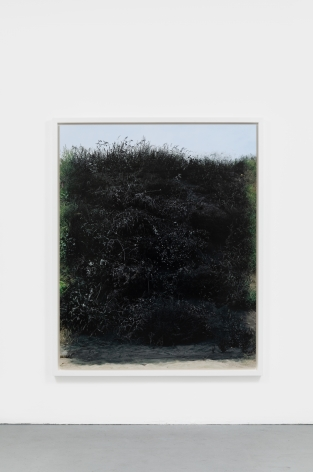 Andrew Dadson Painted Hill, 2014 Inkjet print 73 1/2 x 59 inches (186.7 x 149.9 cm) framed: 77 x 62 1/2 x 2 3/4 inches (195.6 x 158.8 x 7 cm) Ed. 3 of 3 with 1 AP (ADA20.002)