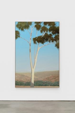 Jake Longstreth, In Glendale (Eucalyptus), 2019