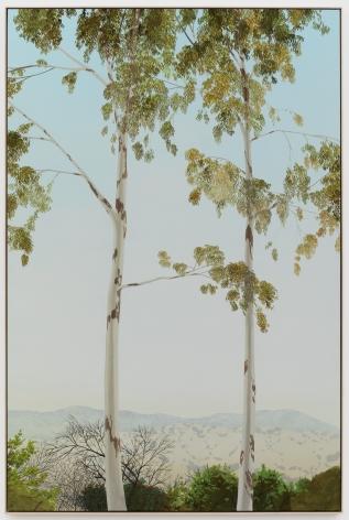 Jake Longstreth, In Glendale (Eucalyptus 4), 2020. Oil on muslin, 85 x 57.25 in, 216 x 145.5 cm (framed). (JLO20.005)