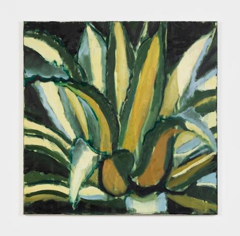 Jonathan Wateridge Plant II, 2016 Oil on canvas 19 x 19 in 48.3 x 48.3 cm (JWA21.064)