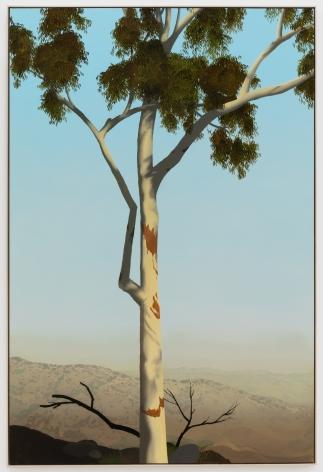 Jake Longstreth, In Glendale (Eucalyptus 3), 2020. Oil on muslin, 85 x 57.25 in, 216 x 145.5 cm (framed). (JLO20.007)