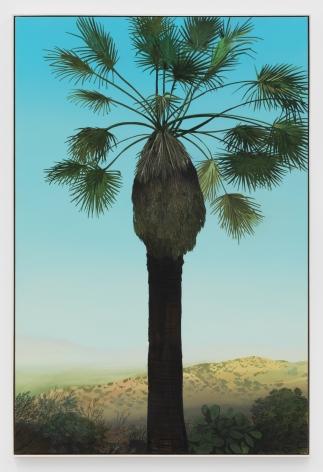 Jake Longstreth, In Glendale (Palm 3) , 2020. Oil on muslin, 60 x 40 in, 152.4 x 101.6 cm (JLO20.018)