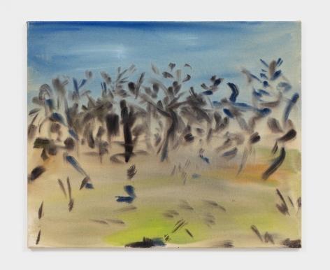 Sophie von Hellermann Will o' the Wisp, 2021 Acrylic on canvas 19 5/8 x 23 5/8 in 49.8 x 60 cm (SVO21.002)