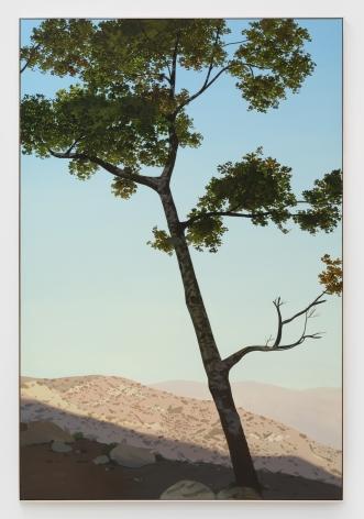Jake Longstreth, In Glendale (Live Oak 1), 2019. Oil on muslin, 84 x 57 in, 213.36 x 144.8 cm (JLO19.017)