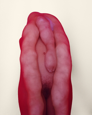Polly Borland Morph 10, 2018 archival pigment print 92 x 78 cm 36.2 x 30.7 in Edition of 6 plus 3 artist's proofs (PBO18.013)