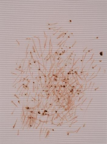 Thomas Wachholz, Ohne Titel (Reibläche), 2016. Red phosphorous, binder on paper, 26.77 x 19.7 inches, 68 x 50 cm (TW16.041)
