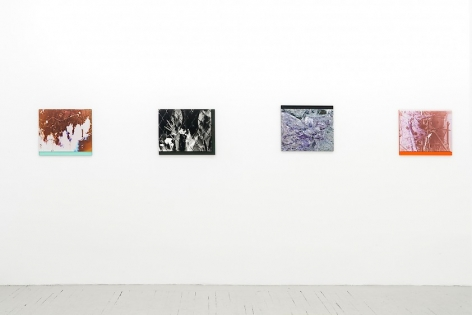 4 color photographs on plexiglass installed next to one another on the wall.