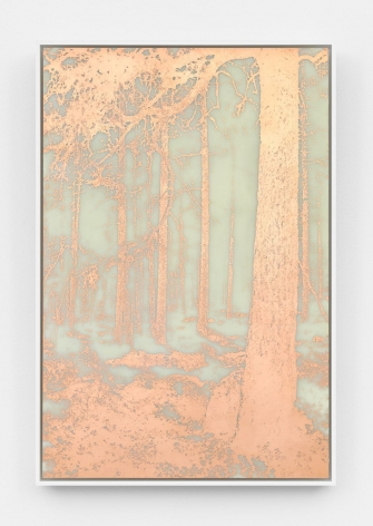 A photograph of a copper-etching that depicts a heavily-wooded landscape wherein the positive space is in copper (bright orange).