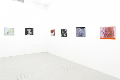 6 color photographs on plexiglass installed around the corner of the room: 2 on the far wall, 4 on the close wall