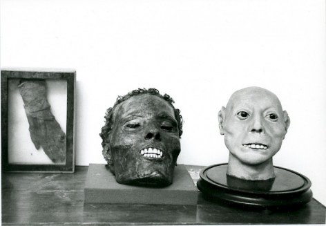 A black and white photograph of one preserved hand, and two preserved dried heads on pedestals. All three elements are situated on a flat surface with a white background.