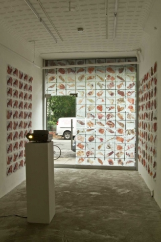 A photograph of the interior of the gallery, with the window covered with images, and images on either side of the window. There is a projector near the center-left of the room