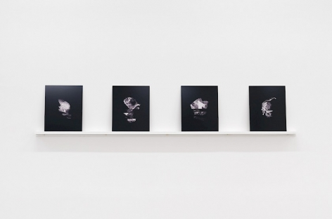 A set of four prints that are on a white shelf, leaning against a white wall.