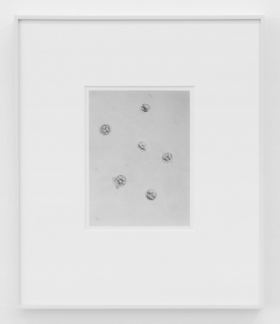 A printed photograph of 6 eggs, taken with a micro-lens. The image is in grey tones, and the frame of the artwork is silver.