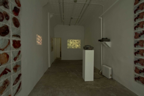 A photograph from the front of the gallery looking backward. There are two video projections near the right side of the room that throw video onto the back wall and left wall